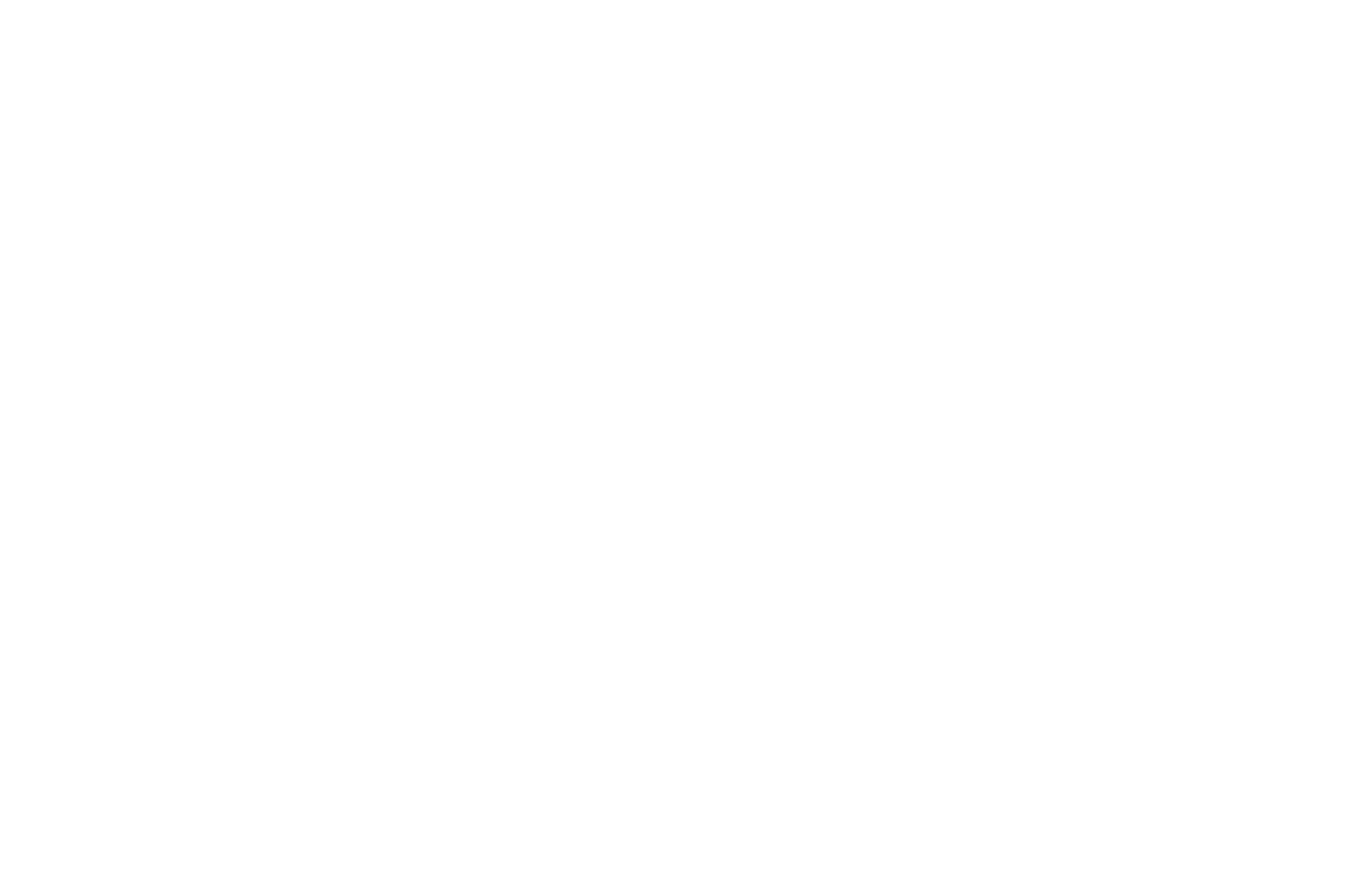 The Village Acupuncturist